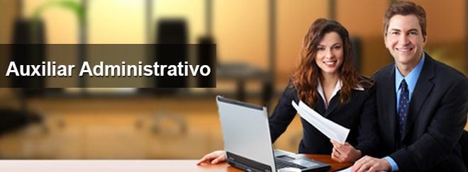 Auxiliar Administrativo Concessionária